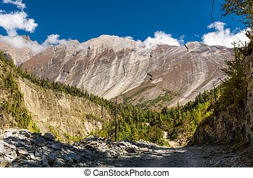 Huge mountain massif Flat slope rising above forest at...