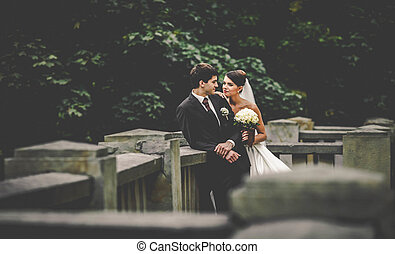 elegant stylish young couple beautiful bride and groom on...