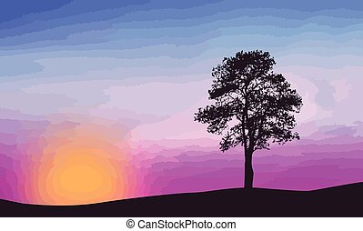 A lone tree on beautiful sunset