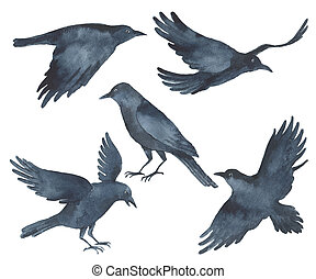 Set of watercolor Raven black birds. - Set of watercolor...