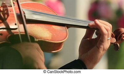 Violinist Playing the Violin Close Up