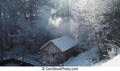 Wooden lodge in the winter wood - The lodge in the winter...