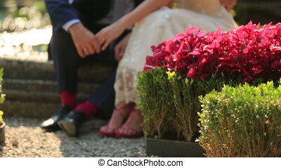 Legs of Lovers With Flowers - Legs of Groom and Bride With...