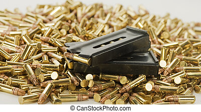 2 loaded magazines and bullets