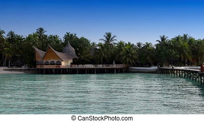 The island with palm trees and traditional tropical hut