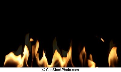 Beautiful  Fire on Black background