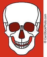 Skull - Illustration of the cartoon skull icon