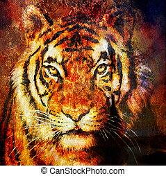 Tiger head, abstract color Background, computer collage, Eye...