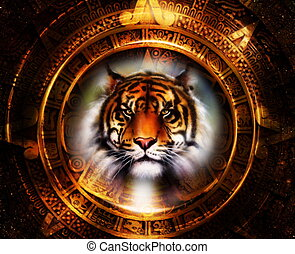Ancient Mayan Calendar and Tiger head, abstract color...