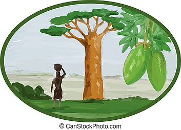 Baobab Tree and Fruit Watercolor - Watercolor style...