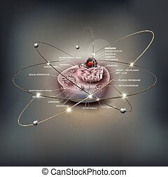 Cell anatomy abstract atom design - Cell anatomy detailed...