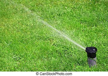 trabalhando, gramado, irrigador