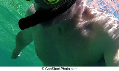 Man Snorkeling Swimming Diving Sea - Man swimming underwater...