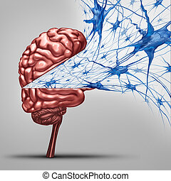 Brain Neurons Concept - Brain neurons concept and human...