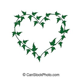 Green Ivy Vine in A Beautiful Heart Shape - Love Concept,...