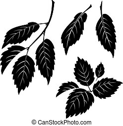 Elm Leaves, Pictogram Set - Set of Plant Pictograms, Elm...