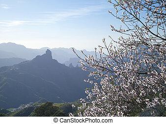Inland Gran Canaria, Caldera de Tejeda in January, afternoon...