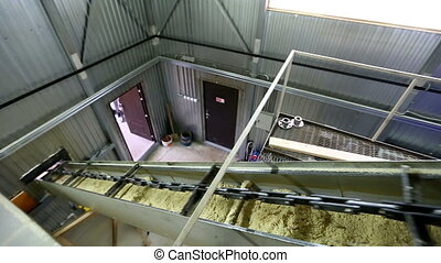 View on conveyor of sawdust at sawmill - Woodworking. View...