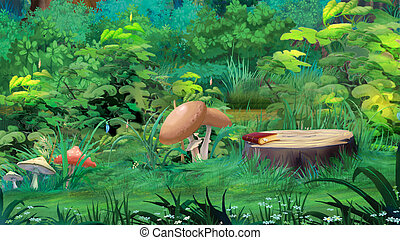 Mushrooms in a Forest Glade