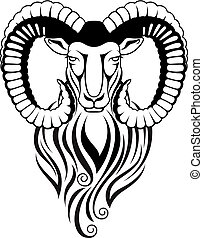 Mountain goat - mouflon with large curved horns - Black and...