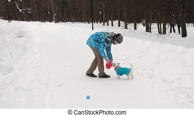 Dog retrieving a toy disk and ball