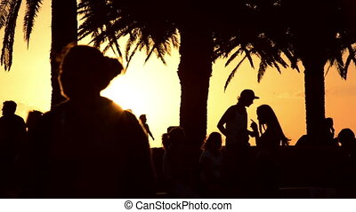 Silhouettes of people doing outdoor activities
