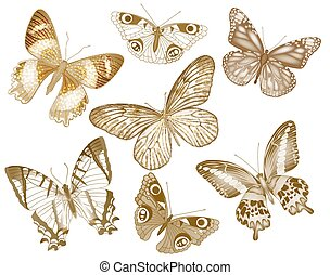 Set of vector butterflies. Insect vintage collection for design and scrapbooking. EPS10.