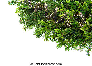 Fresh spruce sprigs with lights decoration isolated on white...