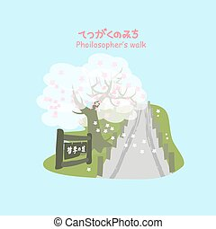 Philosopher Way with cherry blossom or sakura in the...