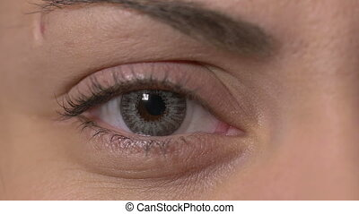 Female eye with contact lens - Close-up of a female eye with...