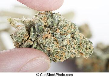 cannabis, doigts