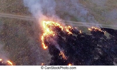 AERIAL VIEW. Burning Dry Grass In The Field Of Steppe Zone -...
