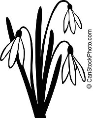 Snowdrop spring flower - Vector illustrations of Snowdrop...