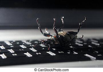 Dead bug on laptop keyboard. Symbol of antivirus, debugging,...