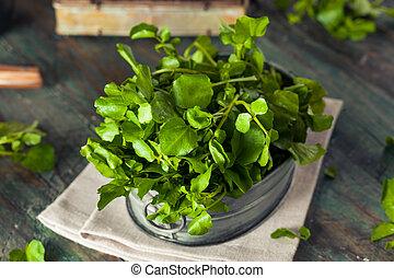 Raw Organic Green Watercress Ready to Use