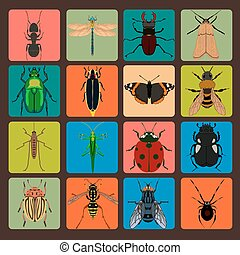 Insect sign set with bug grasshopper spider fly ant...