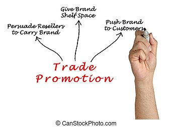 Diagram of Trade Promotion
