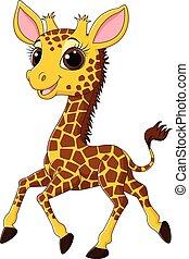 Cute giraffe running isolated