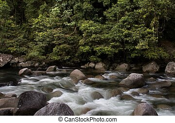 Daintree National Park - Mossman River, Daintree National...