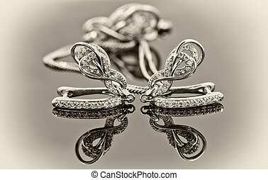 Elegant silver earrings in the shape of a horseshoe and a...