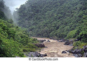 Barron River, Barron Gorge near Cairns, Queensland,...