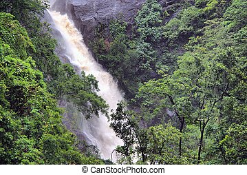 Surprise Falls, Barron Gorge, Cairns, Queensland, Australia