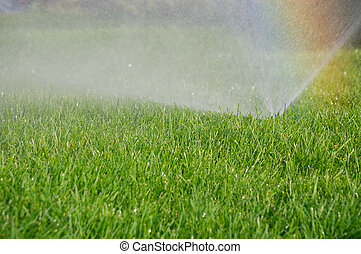 grass sprinkler and rainbow - sprinkler watering the green...