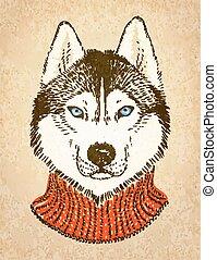 Husky Dog. Vector illustration, eps10. - Portrait of hipster...