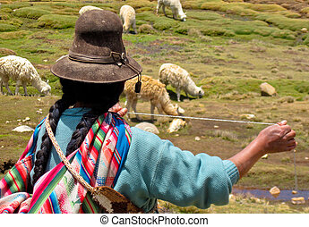 Woman with A Lama Flock in The Andes Of Peru near By...