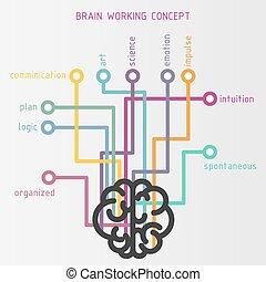 Brain working concept