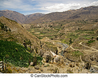 The Colca Canyon In Peru, South America