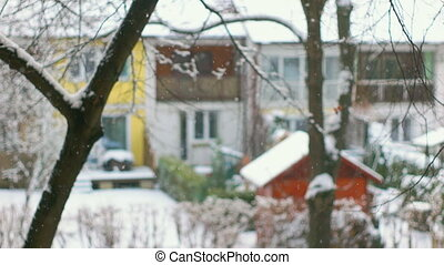 Front Focused Shot of Falling Snow - Calm scene with snow...