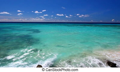 Barbados Beach Landscape - View of the Atlantic Ocean from...