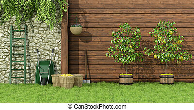Garden with lemon tree - Sunny garden with two lemon trees...